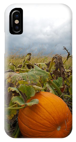 The Great Pumpkin IPhone Case