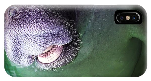 Nc iPhone Case - The Happy Manatee by Karen Wiles
