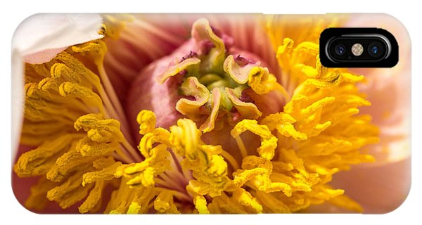 The Heart Of A Dahlia IPhone Case