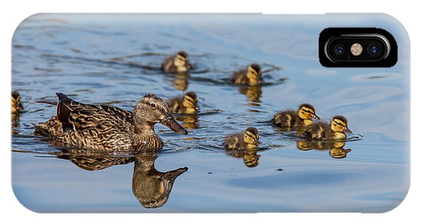 Anas Platyrhynchos iPhone Case - The Hen And Brood Of Young Mallard by Michael Qualls