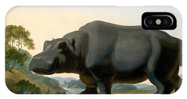 The Hippopotamus, 1804 IPhone Case