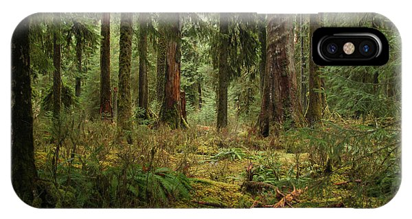 The Hoh Rainforest IPhone Case