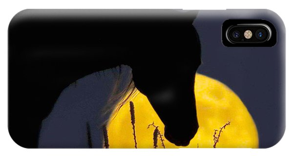 The Horse In The Moon IPhone Case