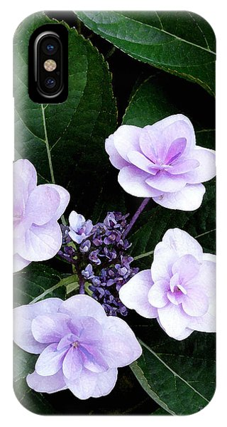 The Hydrangea  IPhone Case