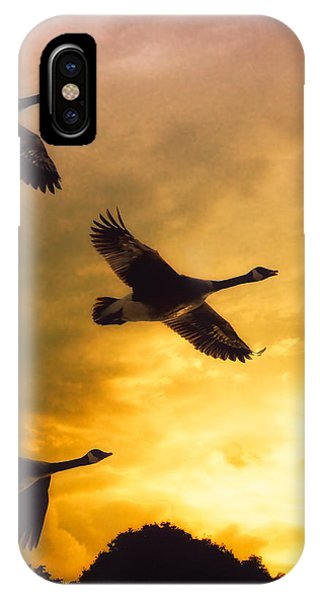 IPhone Case featuring the photograph The Journey South by Bob Orsillo