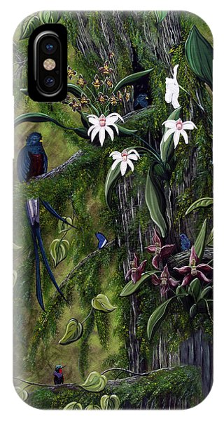 The Jungle Of Guatemala IPhone Case