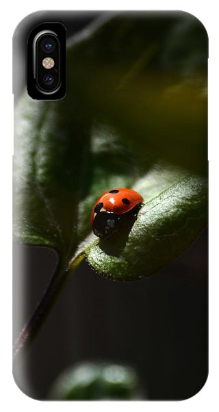 The Lady Bug Phone Case by Phillip Segura