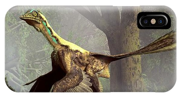 The Last Dinosaur IPhone Case