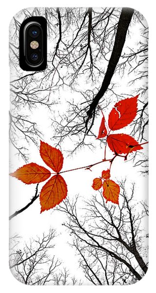The Last Leaves Of November IPhone Case