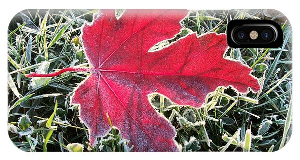 iPhone Case - The Leaf by Red Cross