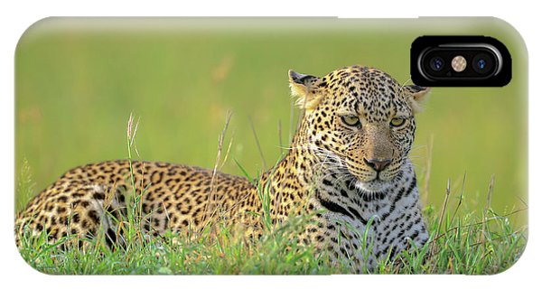 The Leopard Phone Case by Roshkumar