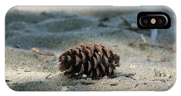 The Life Of A Pinecone Phone Case by Tanya Shockman