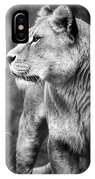 The Lioness IPhone Case