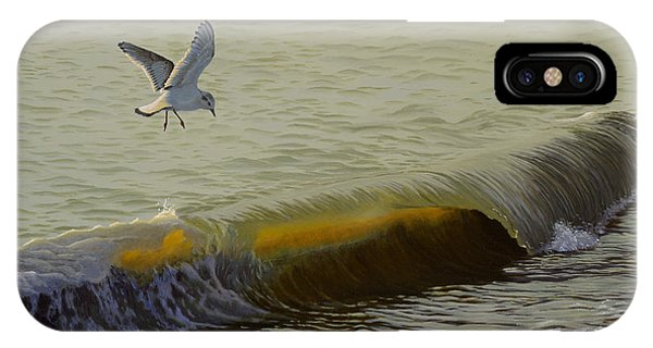 The Little Gull IPhone Case