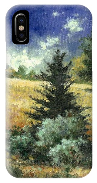 iPhone Case - The Lone Fir by Jim Gola