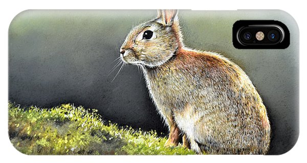 iPhone Case - The Lookout by Paul Dene Marlor