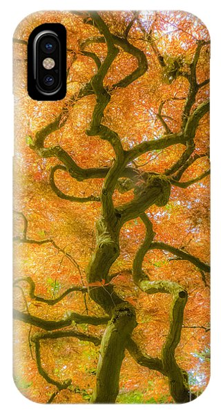 The Magic Forest-15 IPhone Case