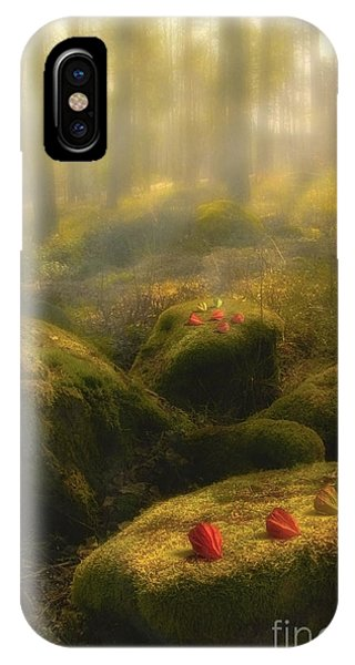 Fall Colors iPhone Case - The Magic Forest by Veikko Suikkanen