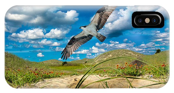 Avian iPhone Case - The Majestic  by Betsy Knapp