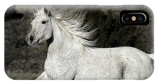 The Mare With The Flying Mane IPhone Case