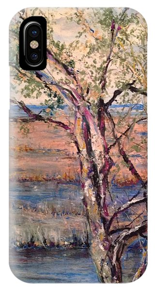 The Marsh And The Live Oak IPhone Case