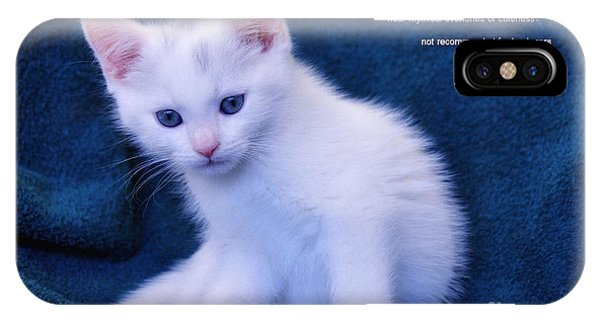 The Meaning Of A Kitten IPhone Case