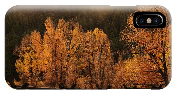 The Mood Of Autumn IPhone Case