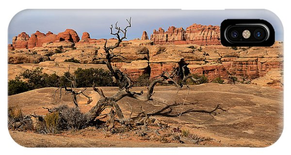 The Needles At Canyonlands National Park IPhone Case