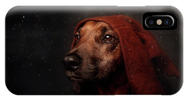 Pet Portrait iPhone Case - The Night-watchman by Heike Willers