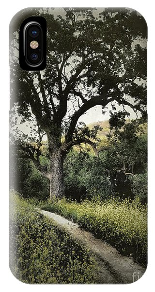 The Old Chumash Trail IPhone Case