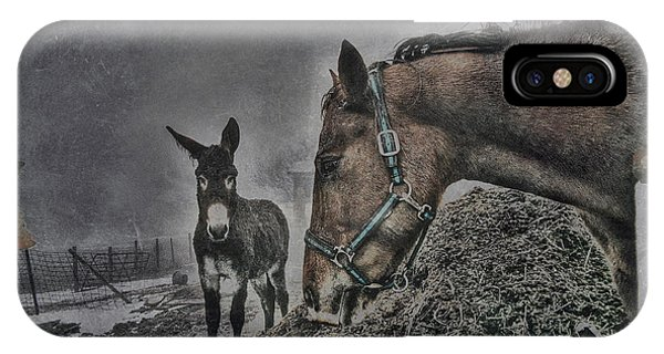 The Old Grey Mare IPhone Case