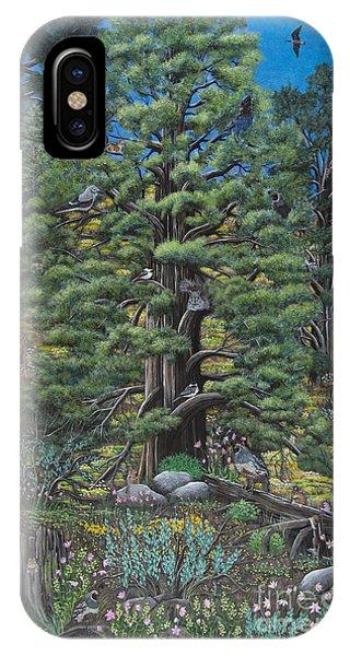 The Old Juniper Tree IPhone Case