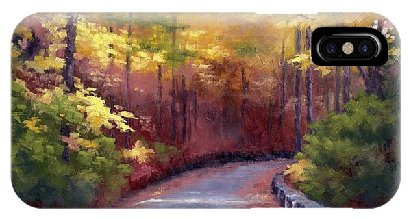 The Old Roadway In Autumn II IPhone Case
