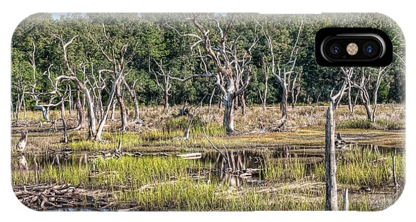 Tidal Marsh iPhone Case - The Old Tree Graveyard by Scott Hansen