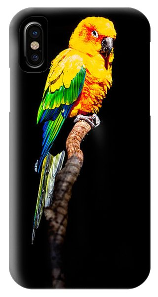 The Parrot Phone Case by Dasmin Niriella