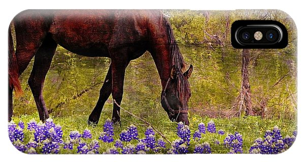 The Pasture IPhone Case
