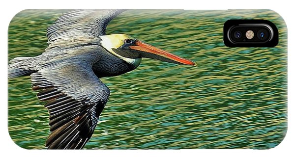 The Pelican Glide IPhone Case