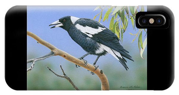 The Pied Piper - Australian Magpie IPhone Case