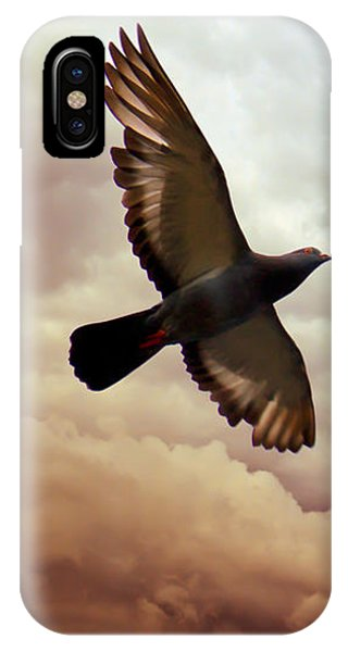 Pigeon iPhone Case - The Pigeon by Bob Orsillo