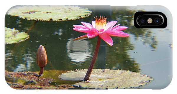 The Pink Water Lily With Lily Pads - One IPhone Case