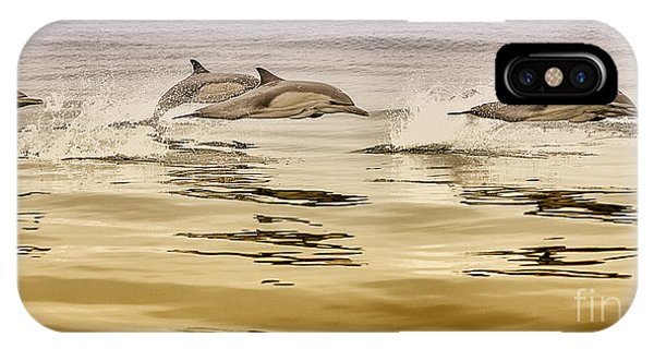 IPhone Case featuring the photograph Dolphin Canvas Print, Photographic Print, Art Print, Framed Print, Greeting Card, Iphone Case, by David Millenheft
