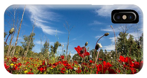 The Poppies Field IPhone Case