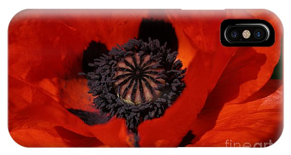 The Poppy Is Also A Flower IPhone Case