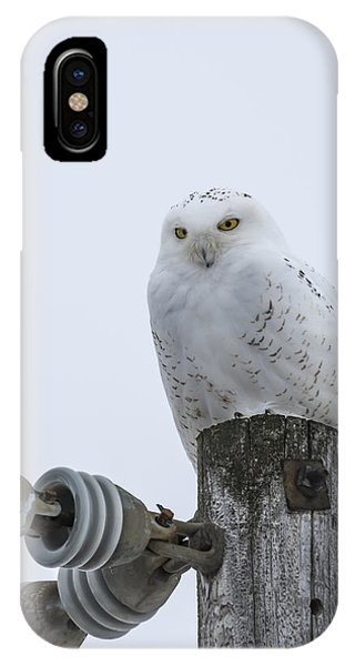 The Power Of The Owl IPhone Case