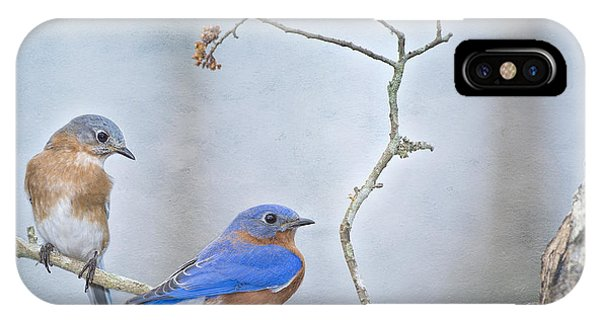 The Presence Of Bluebirds IPhone Case