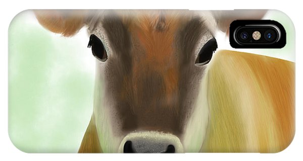 The Pretty Jersey Cow  IPhone Case