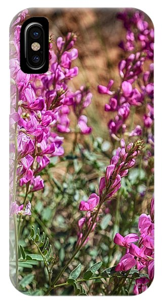 The Purple Flowers In The Desert Hdr Phone Case by Mitch Johanson