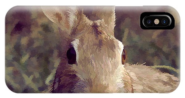 The Rabbit IPhone Case