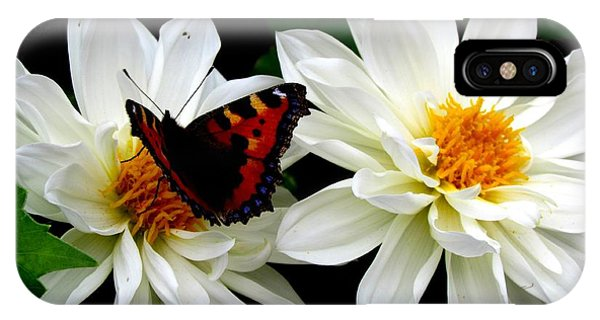 The Red Admiral IPhone Case
