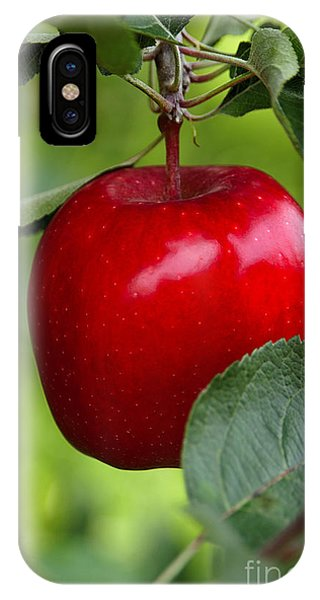 The Red Apple IPhone Case